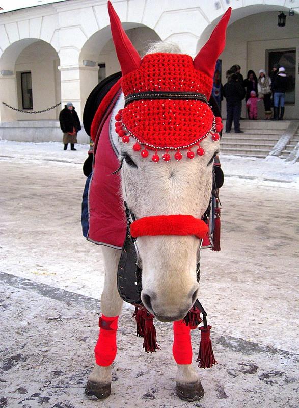 Схема ушки для лошади своими руками 856