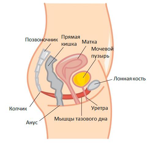 porno-foto-russkih-babok