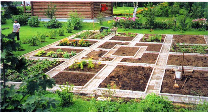 Как сделать красивые грядки на огороде