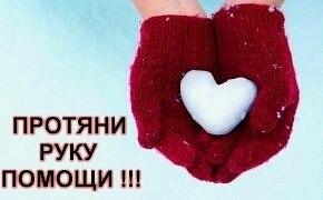 http://forum.sibmama.ru/usrpx/164949/164949_290x180_n3Z0HYIzrfc.jpg