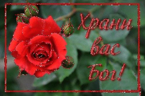 http://forum.sibmama.ru/usrpx/164949/164949_500x331_34060_500x331_XDsc7VM6nBcf221bedf.jpg