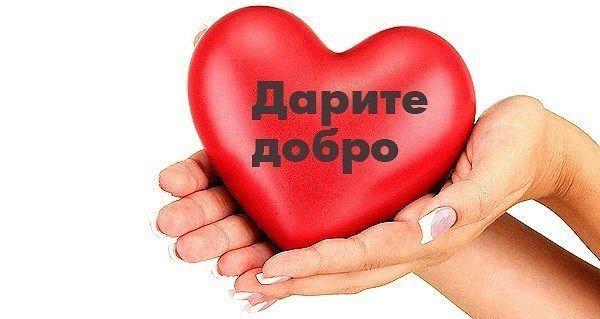 https://forum.sibmama.ru/usrpx/164949/164949_600x319_image759d4434.jpg