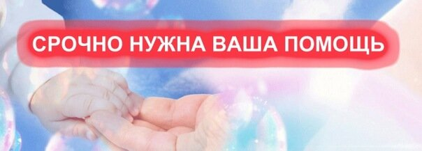 https://forum.sibmama.ru/usrpx/164949/164949_604x217_x_96221a0838144692.jpg
