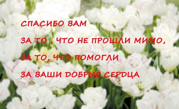 http://forum.sibmama.ru/usrpx/164949/164949_604x368_m1RUzDJkt4M0a5ebb9f.jpg