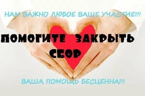 [Изображение: 164949_604x402_i2ed96803.jpg]