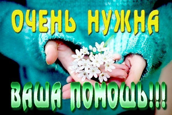 http://forum.sibmama.ru/usrpx/164949/164949_604x403_134803dc7a44ae.jpg
