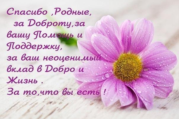https://forum.sibmama.ru/usrpx/164949/164949_604x403_1458097179_12949688ecd.jpg