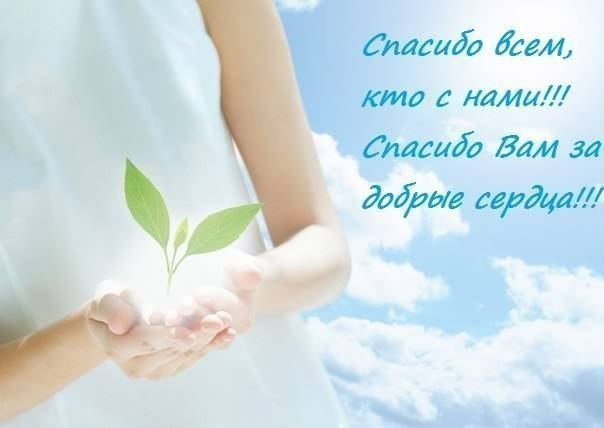 https://forum.sibmama.ru/usrpx/164949/164949_604x428_2016121508231072681324486_650x65993fdcba.jpg