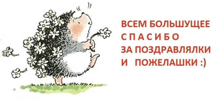 http://forum.sibmama.ru/usrpx/169695/169695_764x385_9a2a89df.jpg
