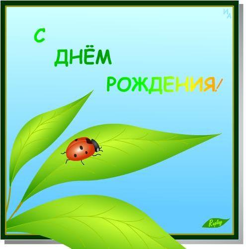 Лепесток - с Днём Рождения! 21110_495x500_korovkaprevGros_1