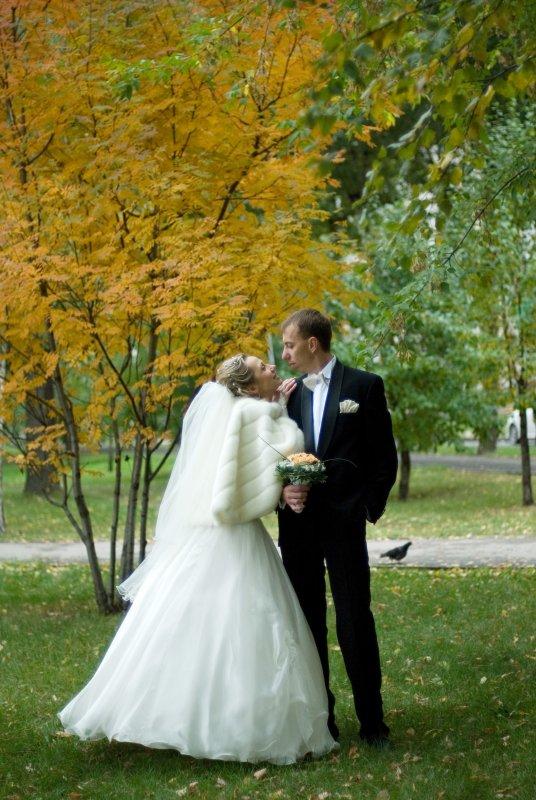 Выкуп невесты в стиле врача сексопатолога