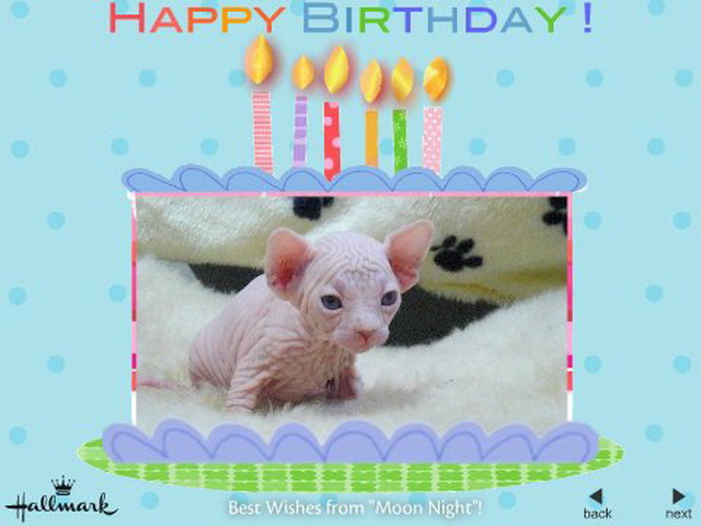 Картинка с днем рождения со сфинксом, марта
