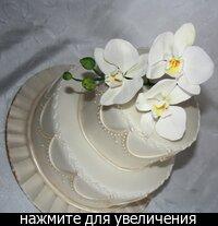 Роза, бордовые каллы, гиперикум и рускус сделаны из мастики.  Берграс для кондитерской флористикеи, но он не съедобный.