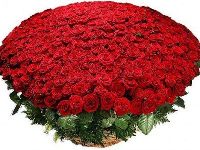 http://forum.sibmama.ru/usrpx/80533/80533_668x500_img418.jpg