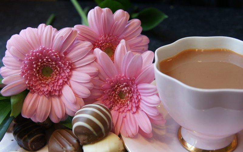 Картинки цветы и шоколад 8